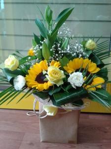Sunny Sunflower