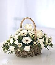 White & Green Basket