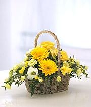 Yellow & Purple Basket