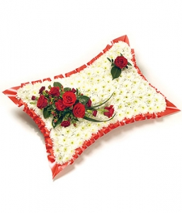 Based Red & White Pillow