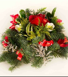 Holly Posies
