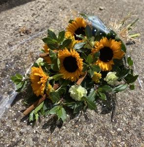 Sunny Sunflower Sunshine