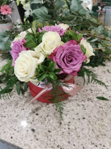 Roses For Posies