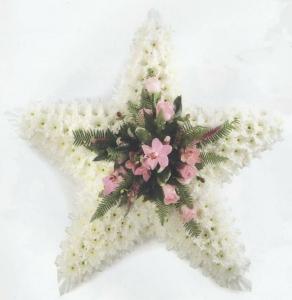 Bedded Star