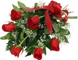 ♥ Six Red Roses ♥