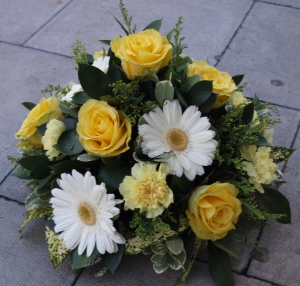 Mellow Yellow Posy