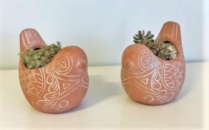 Succulent bird planter