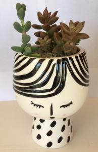 Succulent Lady Planter