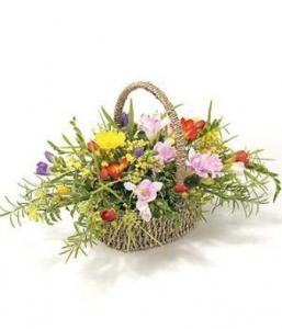 Freesia Basket
