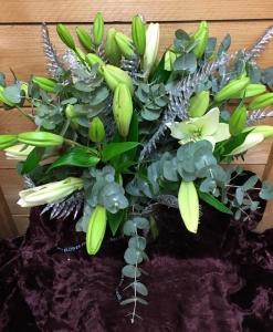 Winter Lilys