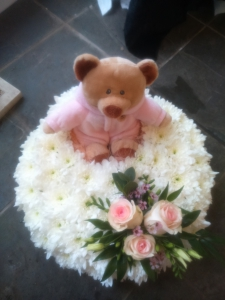 Teddy Bear (14inches)