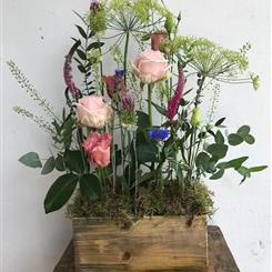 A Scented Arrangement