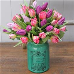 Beautiful Tulip Vase