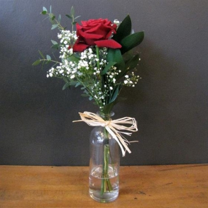 1 Single Red Rose Vase