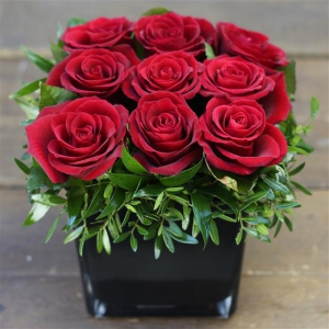 Red Rose  Upid Cube