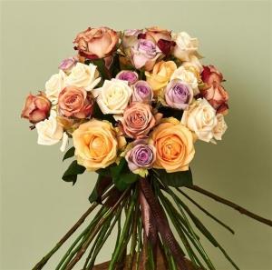 Luxury - Rosa
