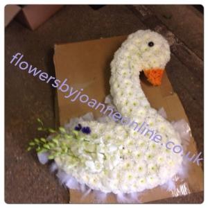 Swan Funeral Tribute
