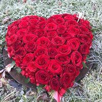 Love Always Heart