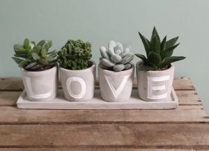 LOVE Planters