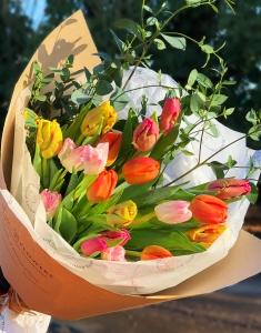 Tulip Specials