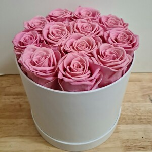 12 Preserved Pink Roses