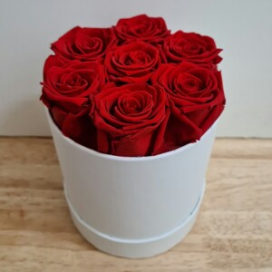 7 Preserved Red Roses