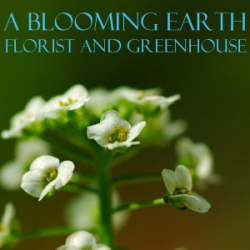 A Blooming Earth Florist and Greenhouse