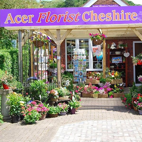 Acer Florist Cheshire