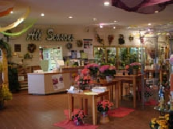 All Seasons Garden Center & Floral