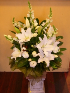 All White Box Arrangement