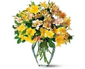 Alstroemeria Vase