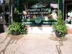 Amazonia Florist
