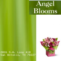 Angel Blooms