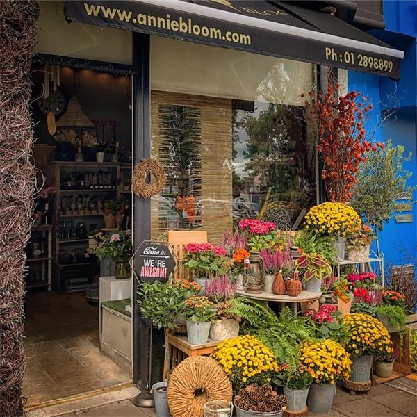Annie Bloom Florist