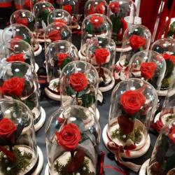 Anthemio Flowershop