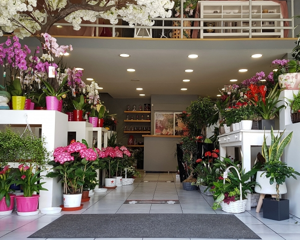 Anthemion Flowers Greece