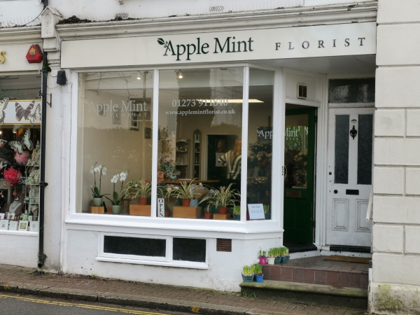 Apple Mint Florist