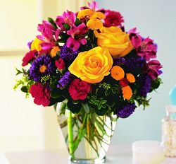 Assorted Colorful Blooms