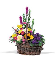 Basket Of Gladness