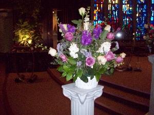 Beauty Lilac