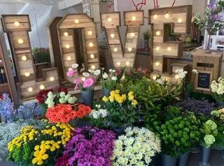 Belle Florists