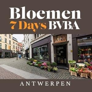 Bloemen 7 days BVBA