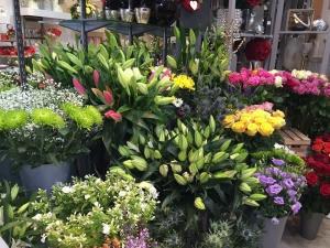 Blooming Wonderful