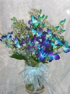 Blue Dendrobium Orchids In Vase