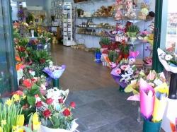 Bluebell Florist