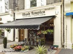 Blush Temples