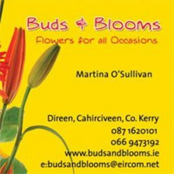 Buds and Blooms