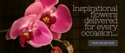 Bunch N Judys Florist & Gifts