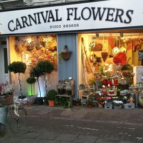 Carnival Flowers