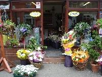 Christie's Flowers